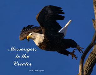 Messengers to the Creator