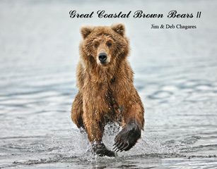 Great Coastal Brown Bears II